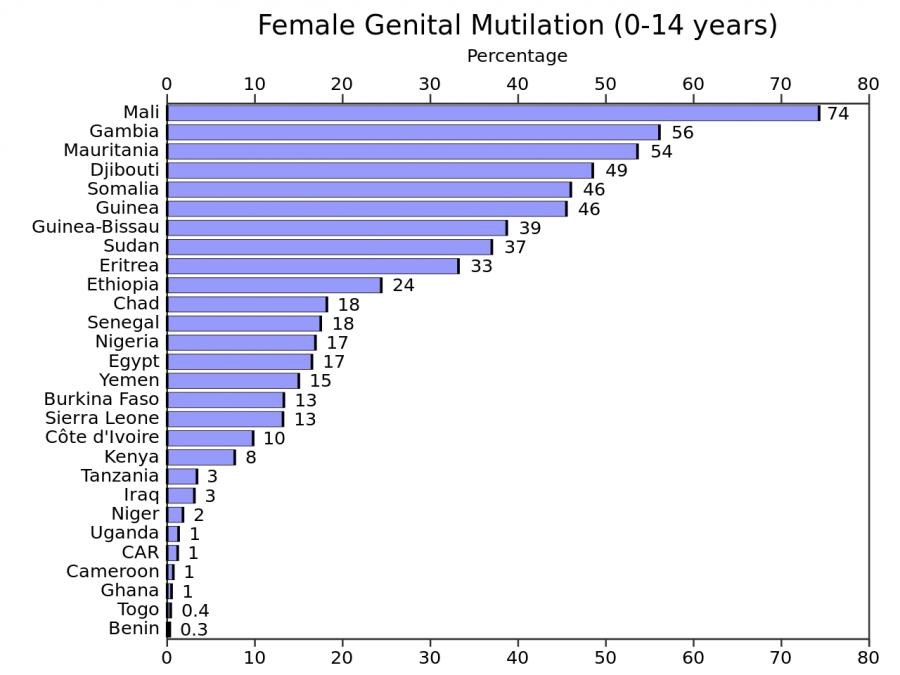GIORNATA INTERNAZIONALE CONTRO LE MUTILAZIONI GENITALI FEMMINILI