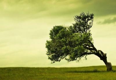 Vivre avec la maladie chronique: les questions fondamentales que le patient doit aborder